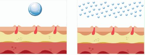 胶原蛋白与胶原蛋白肽有什么区别,看完这篇全明白了